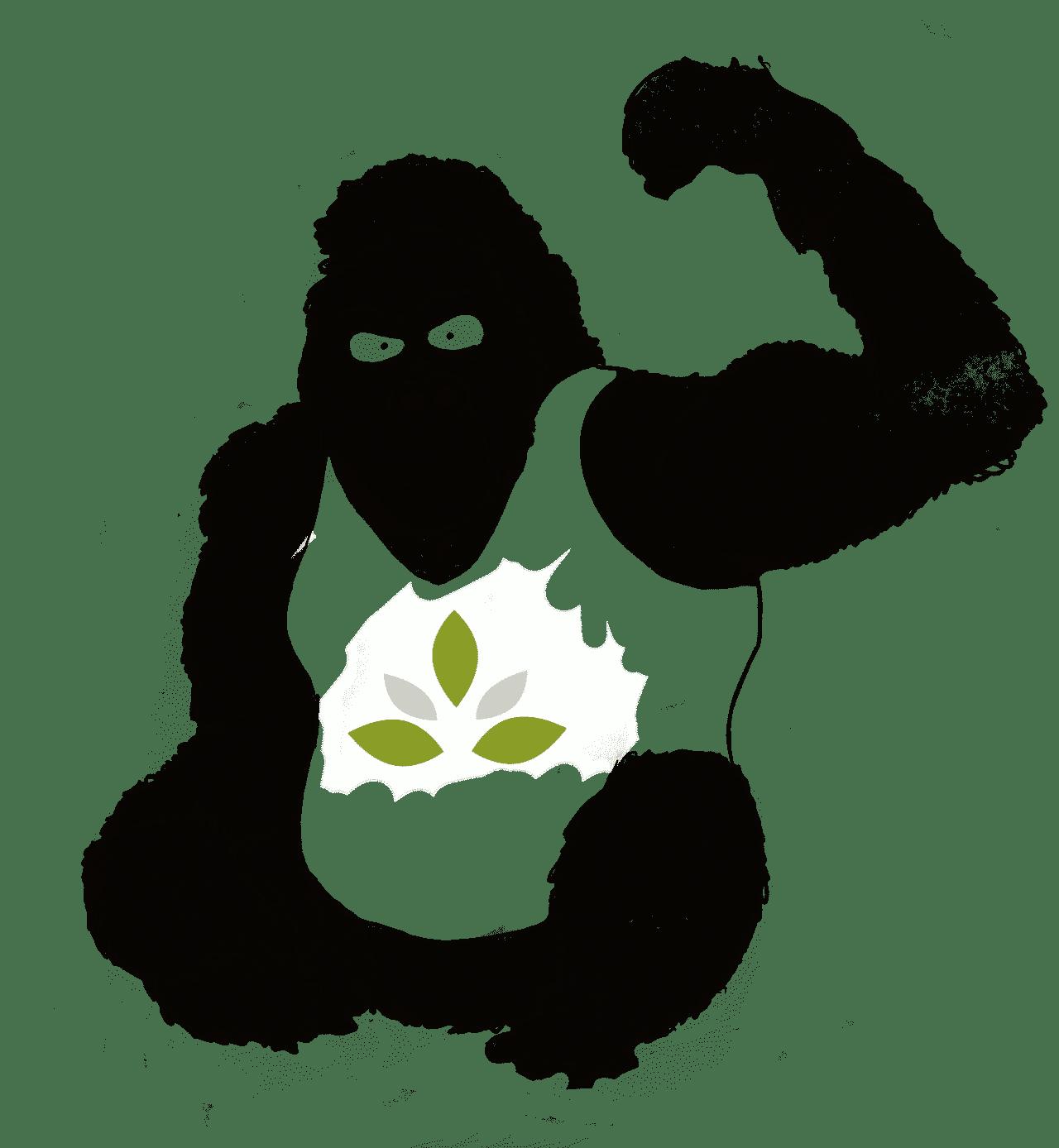 Gorilla Green – Nahrungsergänzungen der Zukunft